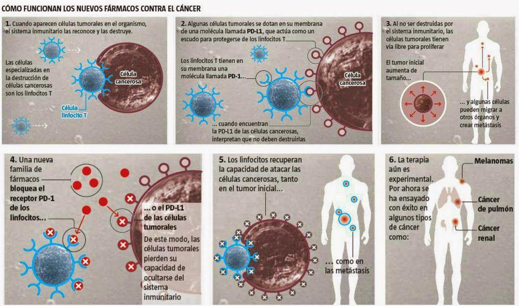 inmunoterapia cancer que es