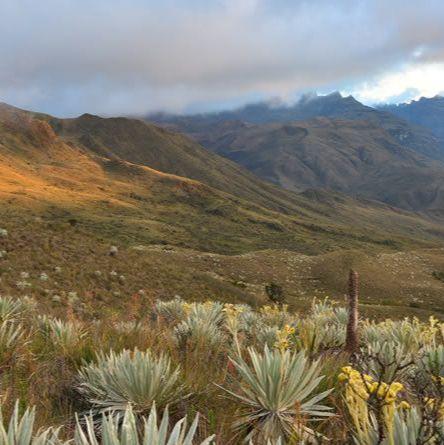 Parque Nacional Chingaza By Dagarciaag On Genially